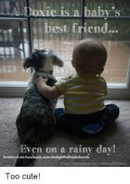 Rainy Day Meme - 25 best memes about rainy day rainy day memes
