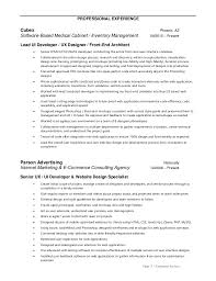 Resume Format For Web Designer Download Ui Developer Resume Haadyaooverbayresort Com