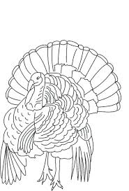 free printable turkey feather coloring pages sheets thanksgiving