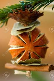 christmas tree ornament made from dried fruit spices and plants