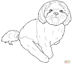 perfect shih tzu coloring pages 90 on seasonal colouring pages