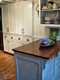 blue kitchen cabinets in cabin diy pantry cabinet using custom cabinet doors blue roof cabin