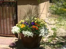 fabulous and easy backyard landscaping ideas youtube