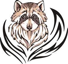 raccoon tattoo royalty free stock photos image 26259858