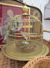 antique brass hendryx bird cage shelters pinterest bird