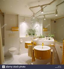 Bathroom Track Lighting Track Lighting Above Circular Basins On Fitted Vanity Unit In