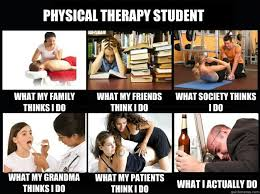 Physical Therapy Memes - physical therapy student what my family thinks i do what my