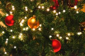 Branch Christmas Tree With Lights - free images branch evergreen holiday fir decor christmas
