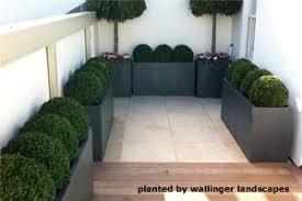 evergreen pots and soil garden pots terracotta pots garden