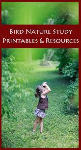bird nature study printables u0026 resources bird nature study