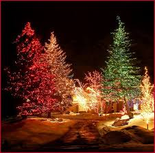 Outdoor Christmas Light Safety - outdoor christmas light display popularly b dara net