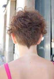 curly and short haircut showing back chic multi textured vivacious curly short cut hairstyles