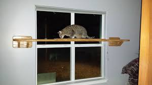 Wall Shelves For Cats Did You Know That We Can Customize Our Cat Furniture
