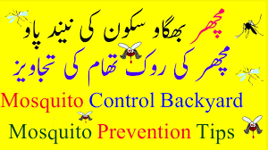 mosquito prevention tips mosquito control backyard machar