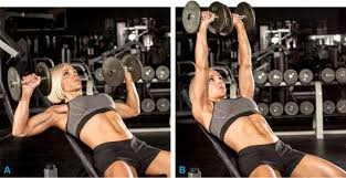Bench Press Chest Workout 3 Basic Chest Exercises For Women To Lift And Shape Top Me