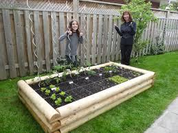bufco organic vegetable gardening services in toronto testimonials