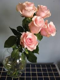 fresh flowers 10 secrets for keeping fresh flowers alive longer come flowers