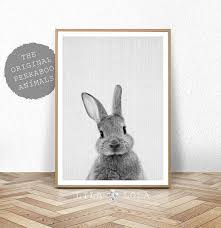 rabbit prints rabbit print baby animal prints woodland nursery decor