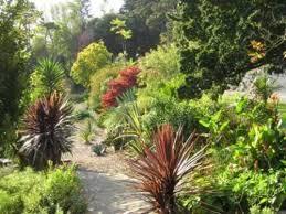 Ventnor Botanic Gardens Ventnor Botanic Gardens Reviews Ventnor United Kingdom Skyscanner