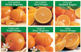 fruit of the month grove fresh fruit shipped every month