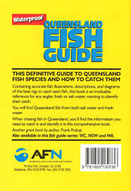 booktopia afn queensland fish guide waterproof pocket size by