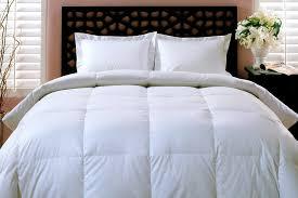 Cal King Comforter Amazon Com Blue Ridge Home Fashions King Down Comforter Home