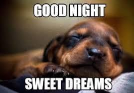 Goodnite Meme - good night meme best list of funny goodnight memes