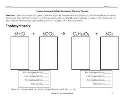 Photosynthesis And Cellular Respiration Worksheet And Cellular Respiration Chemical Formula Worksheet