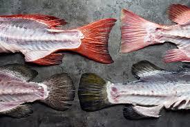 our seafood cuts hai sia seafood