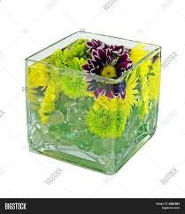 Square Vase Flower Arrangements A Submerged Flower Arrangement In Square Glass Vase Stock Photo