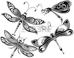 dragonfly stock photos royalty free business images