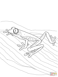 frogs coloring pages free coloring pages