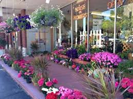 flower delivery springfield mo about house of flowers inc springfield mo florist