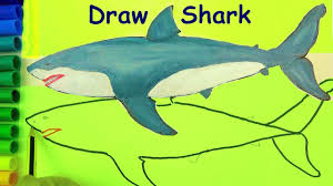 draw sharks coloring pages drawing for kids learn colors for