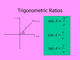 best solutions of grade 10 math trigonometry worksheets with