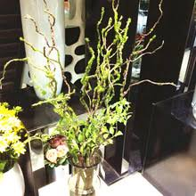 Home Decor Artificial Trees Popular Artificial Trees And Plants Leaves Buy Cheap Artificial