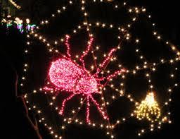 Botanical Gardens Lights Garden D Lights Festival Bellevue Events Happenings
