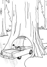 california state tree coloring page new coloring pages itgod me