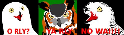Art Owl Meme - clipart three owls meme clip art