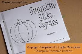pumpkin life cycle worksheets mamas learning corner