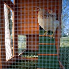 boomer u0026 george deluxe 4 chicken coop with run hayneedle
