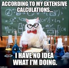 I Have No Idea What Im Doing Meme - chemistry cat meme imgflip