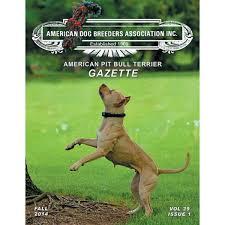 american pitbull terrier merchandise volume 39 issue 1 american pit bull terrier gazette