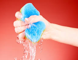 your kitchen sponge is covered with bacteria u2014 don u0027t bother