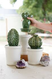 set of 3 ceramic cactus canisters for kitchen or bathroom jars one