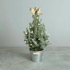 Miniature Led Christmas Tree Mini Christmas Tree With Lights Real Mini Christmas Tree