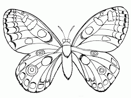 beautiful butterfly coloring page coloring home