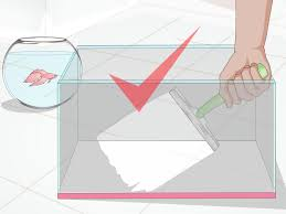 Proper Way To Set A Table by How To Set Up A Betta Tank With Pictures Wikihow