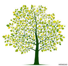 green tree isolated buy this stock vector and explore similar
