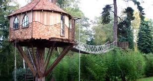 branch out treehouse living